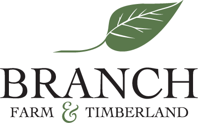 Branch Farm and Timberland